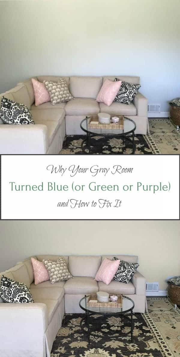 Gray Room Turned Blue Green Purple Or